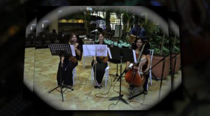 Violines Frenesi