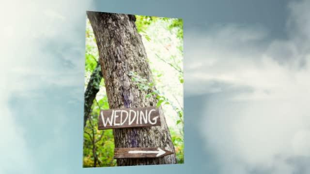 Shari Wedding Photography